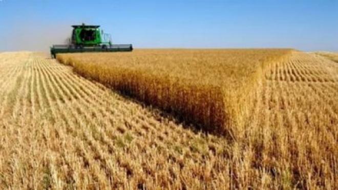 Самарская область поставит абсолютный рекорд по сбору урожая