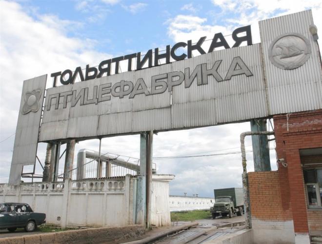 В Тольятти могут признать банкротом местную птицефабрику