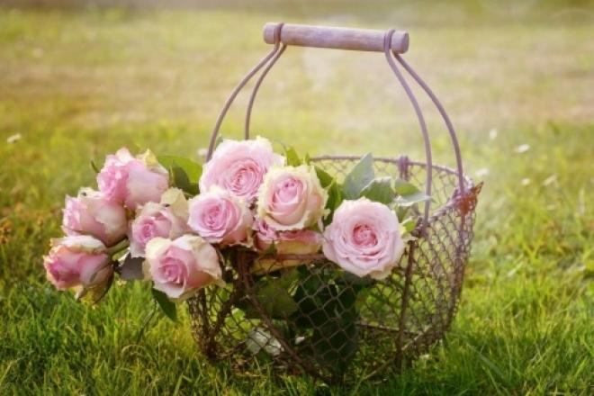 В Тольятти уничтожены розы из Эфиопии