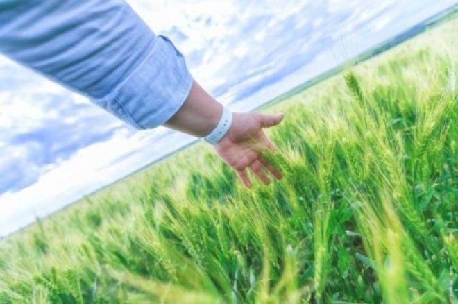 Николай Меркушкин поздравил экологов Самарской области с профессиональным праздником