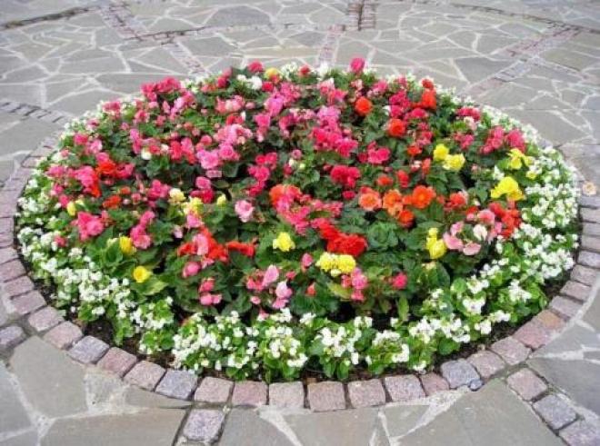 Самара будет утопать в цветах