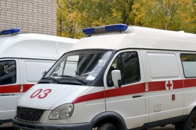 Жительница Тольятти пыталась уйти из жизни вместе с питомцами